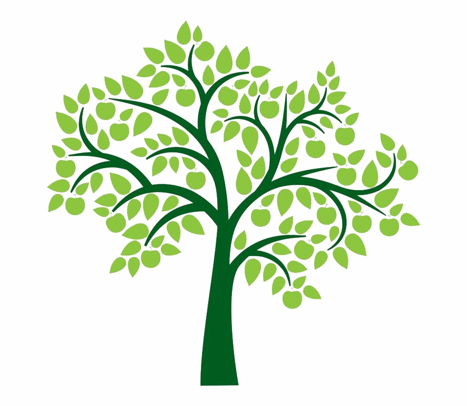 Family Tree Clipart Png Transparent Png , Png Download