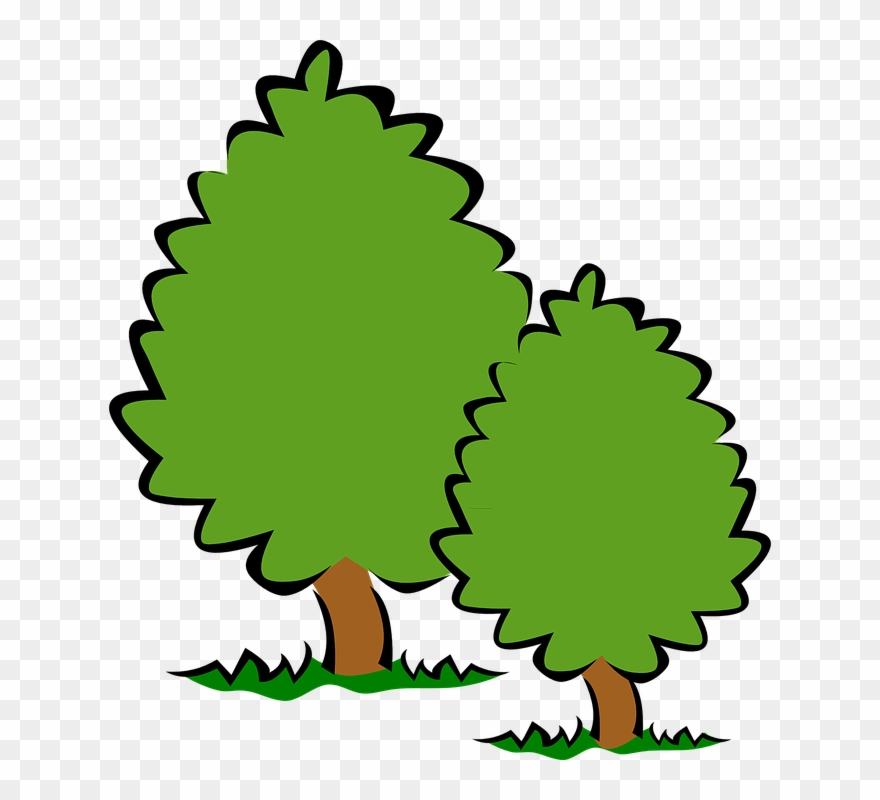 Trees Tree Clip Art Background Free Clipart Images