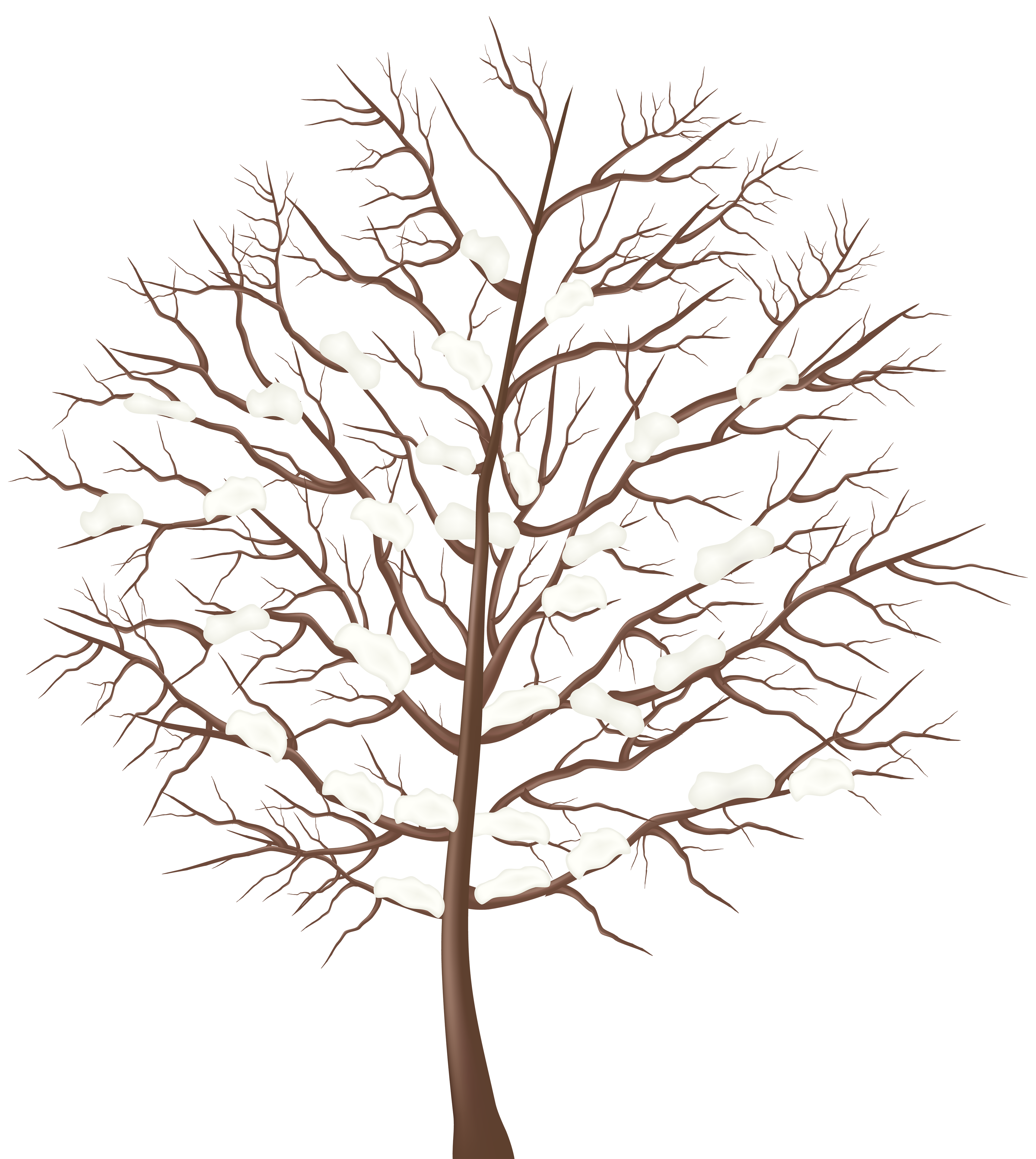 Free Winter Trees Cliparts, Download Free Clip Art, Free