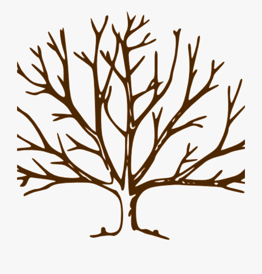 Bare Tree Clipart Bare Tree Bare Tree Clip Art Vector