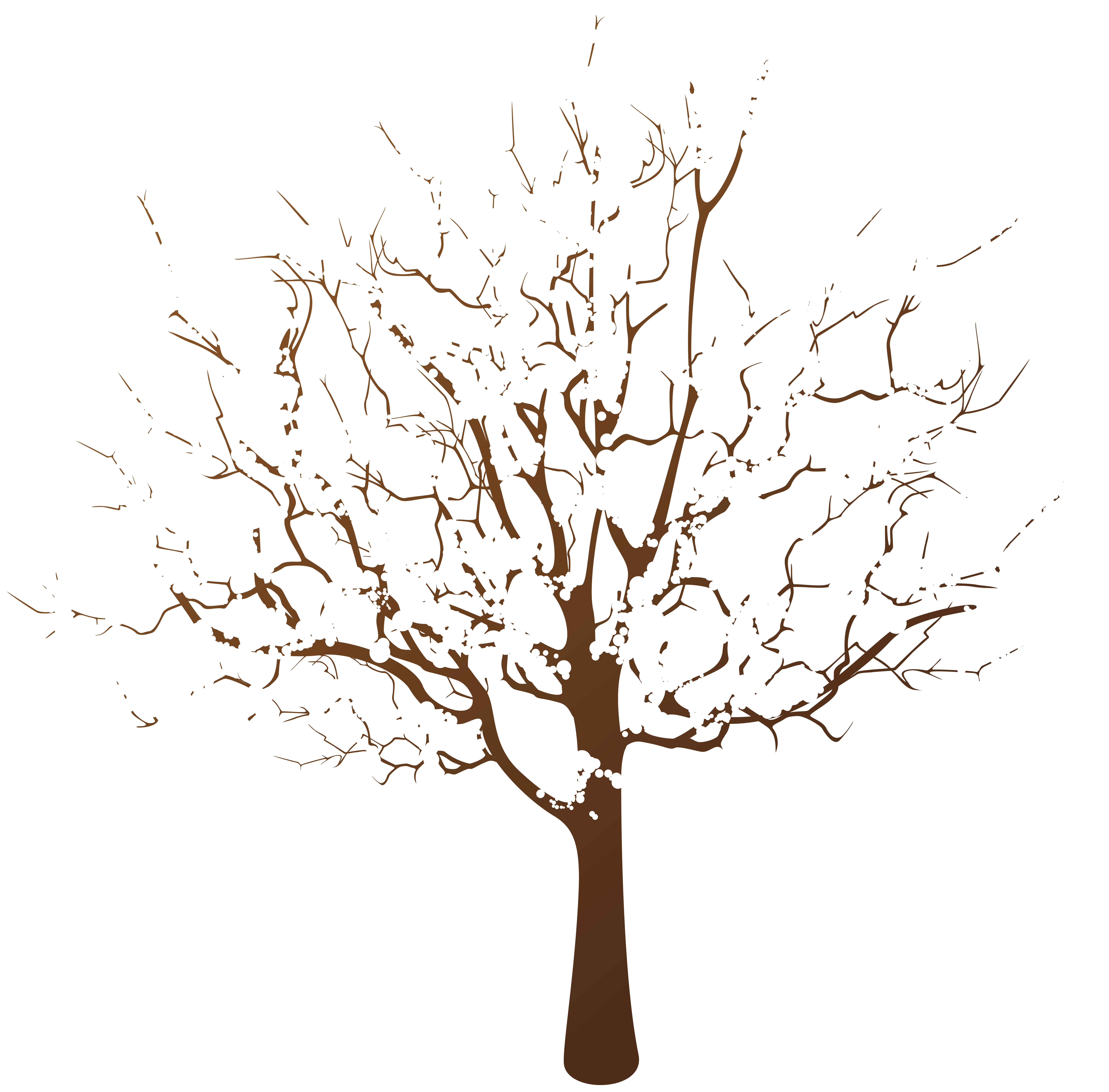 Winter tree transparent.