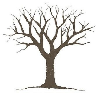 Free bare tree.