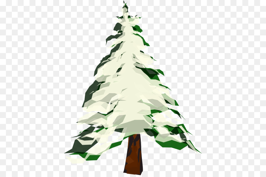 Winter pine tree.