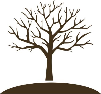 18 tree trunk.