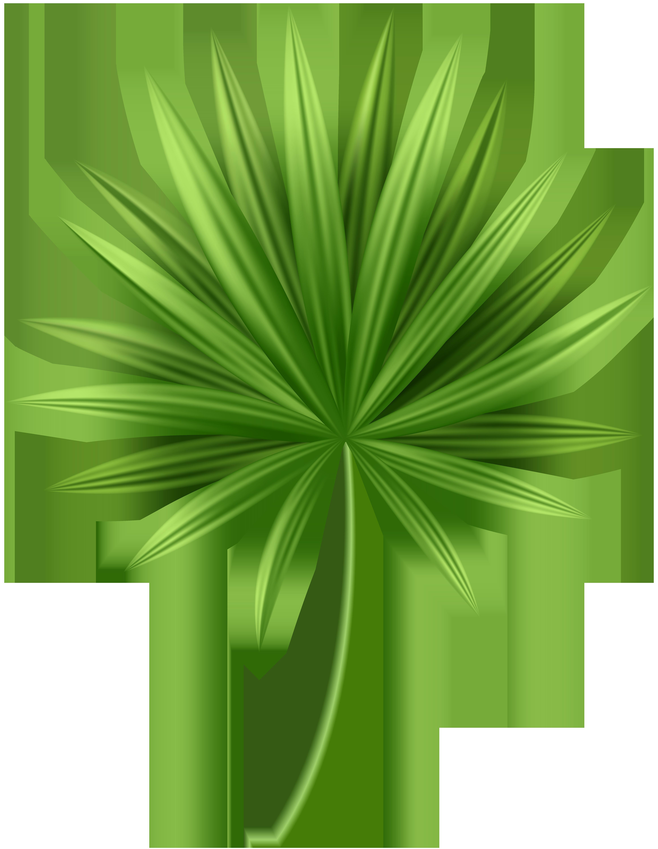Tropical leaf clipart transparent pictures on Cliparts Pub ...