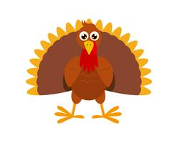 Turkey clipart free.