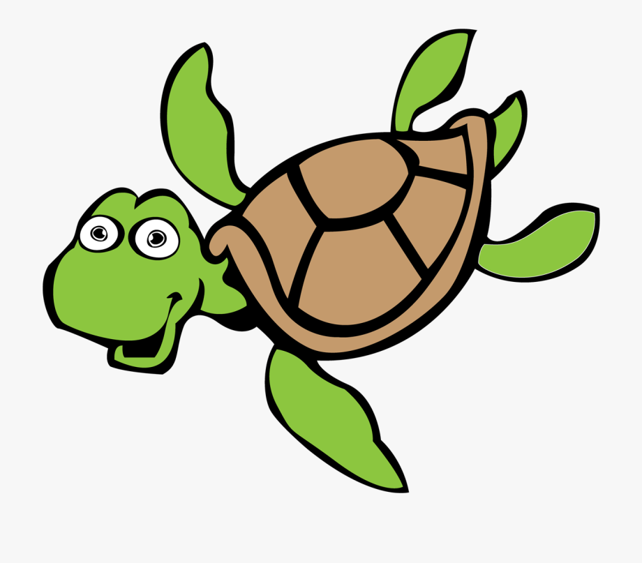 turtle clipart easy