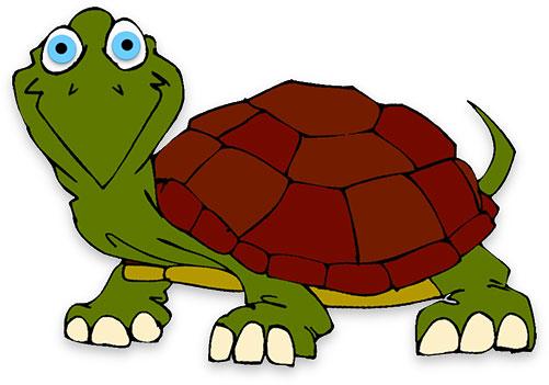 Free turtle animations.
