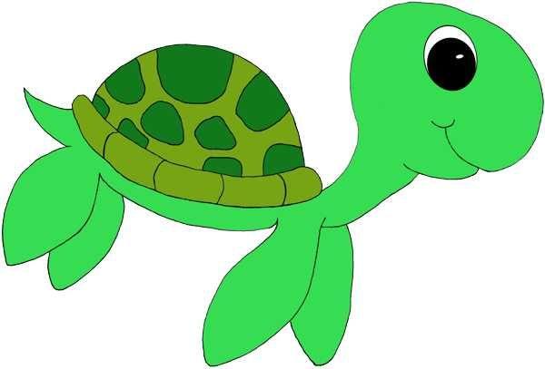 Cute turtle clipart.