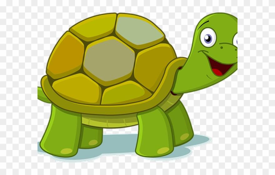 Cartoon pictures turtles.