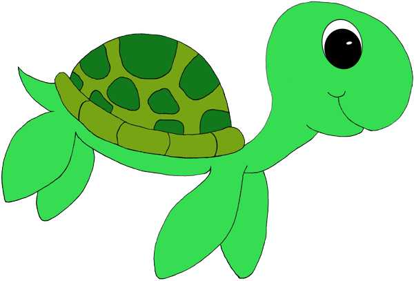 turtle clipart swimming