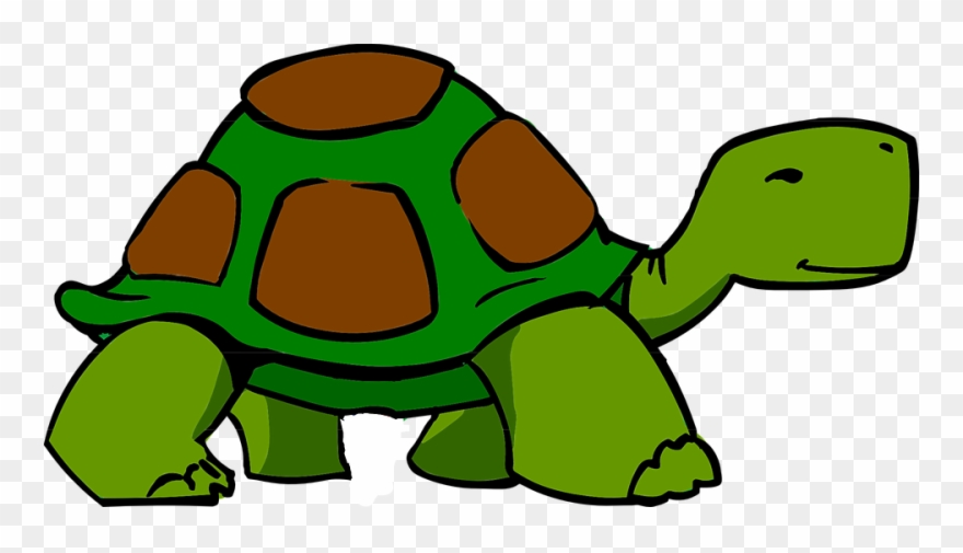 Green turtle clipart.