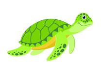 Reptiles turtle clipart.