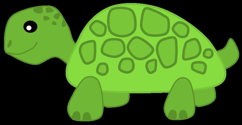 Free green turtle.