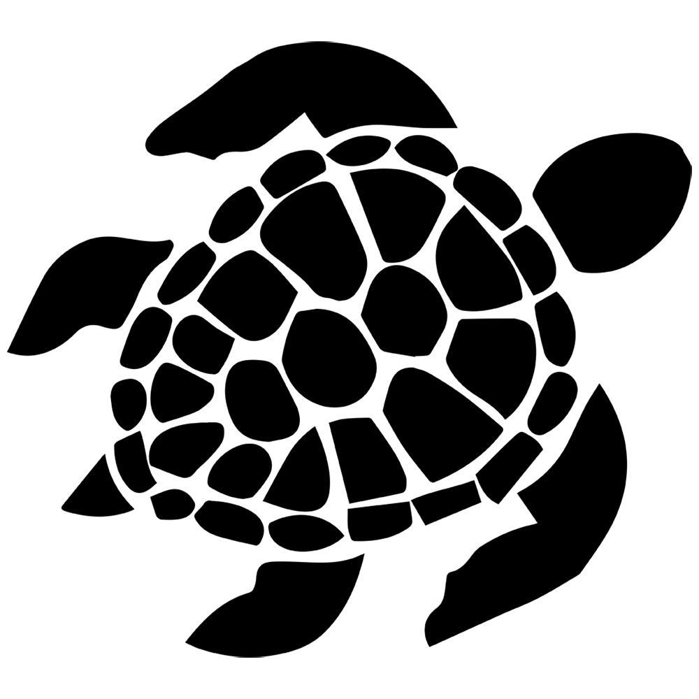 turtle clipart colorful