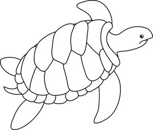Turtle clipart image.