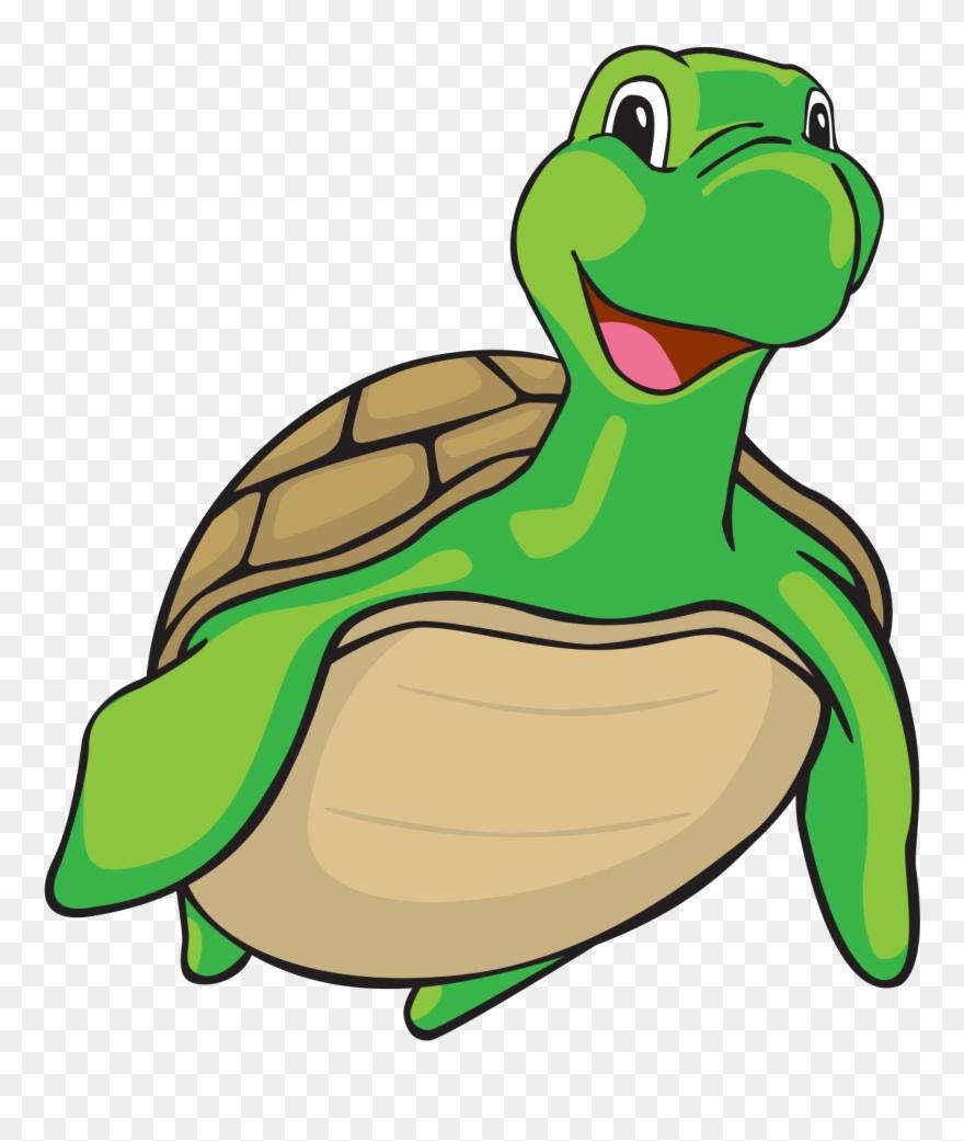 Swimming turtle cartoon.