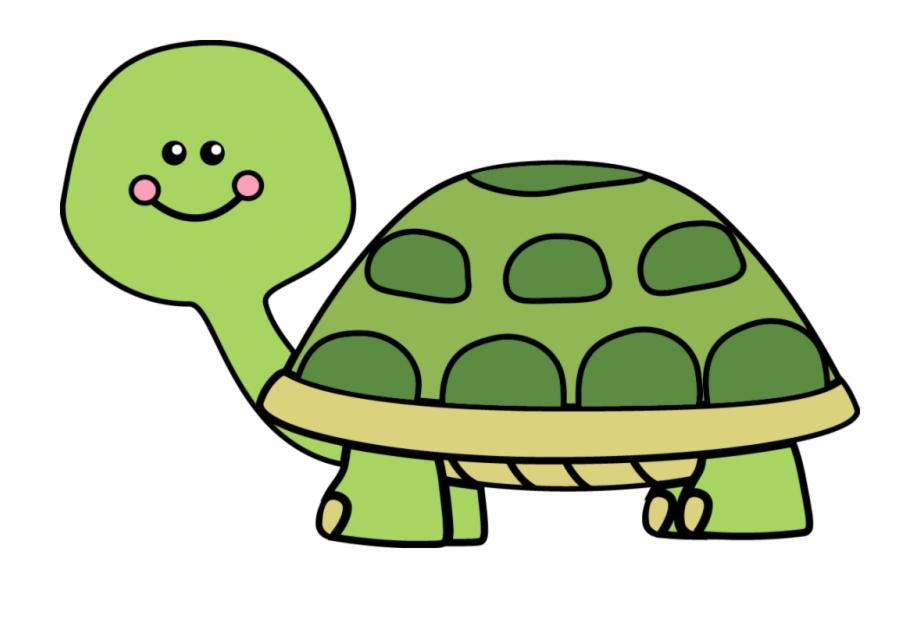 Clipart turtle box.