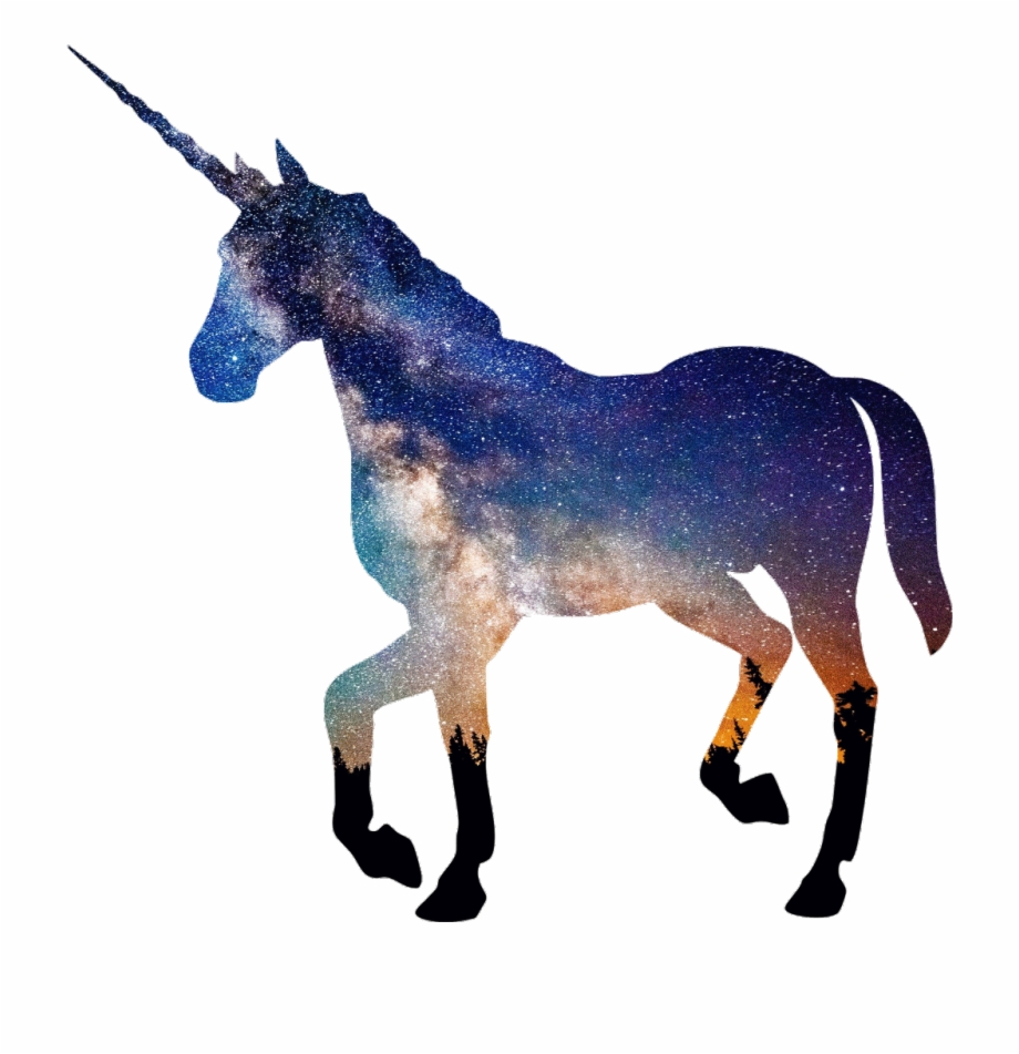 Unicorn galaxy horse.