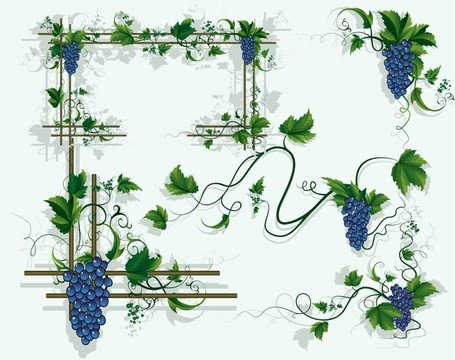 Free Grapes Vines Grape Leaf Borders Clipart and Vector