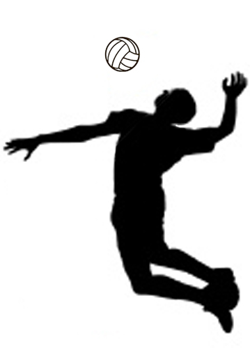 Free sports volleyball.