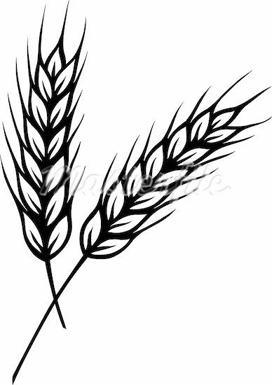 Wheat silhouette clipart portal.