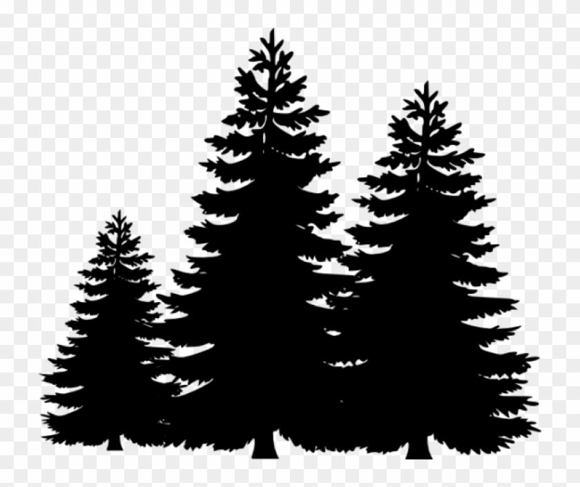 Permalink pine tree.